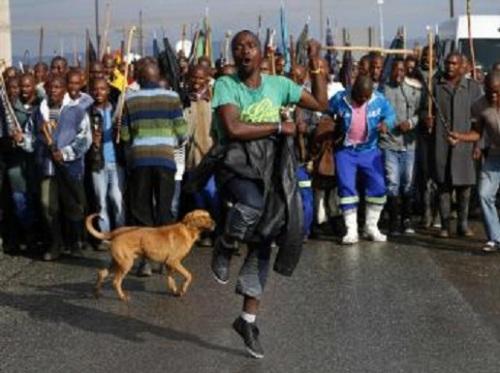 Marche des grévistes de Marikana, en attendant le retour de leurs camarades libérés par la police, le 6 septembre 2012.
