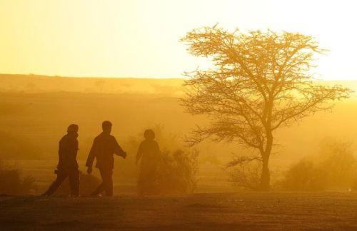 561185-des-hommes-dans-le-desert