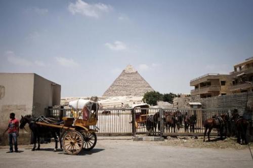 Des calèches pour les touristes attendent près des pyramides du Caire, le 18 juillet 2013