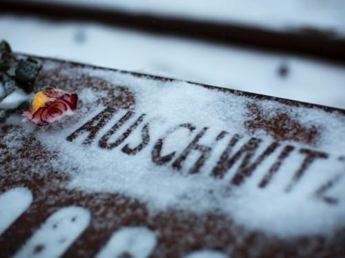 Aushwitz3