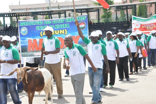 PIC.6.AGRICULTURE AND ALLIED EMPLOYEES UNION OF NIGERIA, AT A MARCH PASS DURING THE 2016 MAY DAY CELEBRATION IN ABUJA ON SUNDAY  (1/5/16). 3279/1/5/2016/OTU/CH/NAN